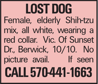 LOST dog Female, elderly Shih-tzu mix, all white, wearing a red collar. Vic. Of Sunset Dr., Berwick, 10/10. No picture avail. If seen Call 570-441-1663