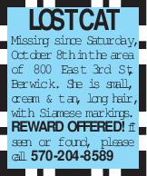 LOST cat Missing since Saturday, October 8th in the area of 800 East 3rd St., Berwick. She is small, cream & tan, long hair, with Siamese markings. REWARD OFFERED! If seen or found, please call 570-204-8589