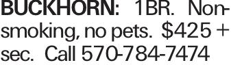 Buckhorn: 1BR. Non-smoking, no pets. $425 + sec. Call 570-784-7474