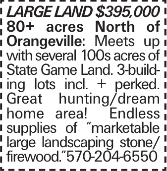 "LARGE LAND $395,000 80+ acres North of Orangeville: Meets up with several 100s acres of State Game Land. 3-building lots incl. + perked. Great hunting/dream home area! Endless supplies of ""marketable large landscaping stone/ firewood.""570-204-6550"