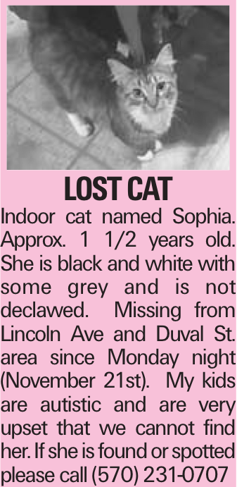 LOSTCAT Indoor cat named Sophia. Approx. 1 1/2 years old. She is black and white with some grey and is not declawed. Missing from Lincoln Ave and Duval St. area since Monday night (November 21st). My kids are autistic and are very upset that we cannot find her. If she is found or spotted please call (570) 231-0707