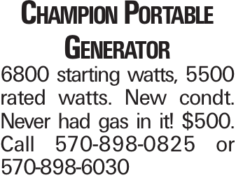 Champion Portable Generator 6800 starting watts, 5500 rated watts. New condt. Never had gas in it! $500. Call 570-898-0825 or 570-898-6030