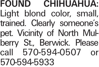FOUND chihuahua: Light blond color, small, trained. Clearly someone's pet. Vicinity of North Mulberry St., Berwick. Please call 570-594-0507 or 570-594-5933