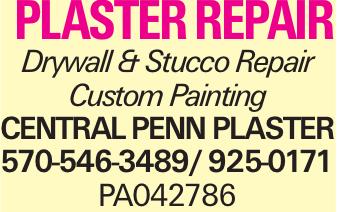 plaster repair Drywall & Stucco Repair Custom Painting Central Penn Plaster 570-546-3489/ 925-0171 PA042786