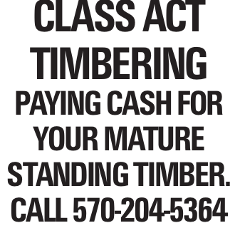 Class Act Timbering Paying cash for your mature standing timber. Call 570-204-5364