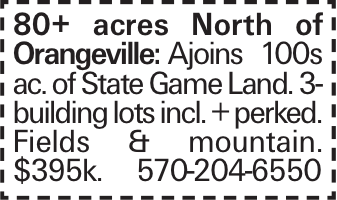 80+ acres North of Orangeville: Ajoins 100s ac. of State Game Land. 3-building lots incl. + perked. Fields & mountain. $395k. 570-204-6550