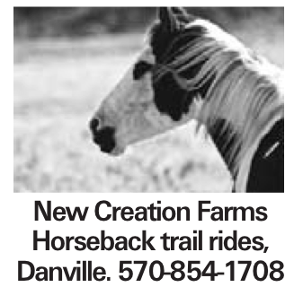New Creation Farms Horseback trail rides, Danville. 570-854-1708