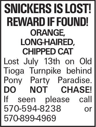 Snickers is lost! Reward if found! Orange, long-haired, chipped cat Lost July 13th on Old Tioga Turnpike behind Pony Party Paradise. Do not chase! If seen please call 570-594-8238 or 570-899-4969