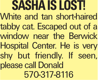 Sasha is lost! White and tan short-haired tabby cat. Escaped out of a window near the Berwick Hospital Center. He is very shy but friendly. If seen, please call Donald 570-317-8116