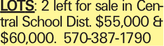 Lots: 2 left for sale in Central School Dist. $55,000 & $60,000. 570-387-1790