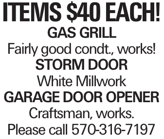 Items $40 Each! Gas Grill Fairly good condt., works! Storm Door White Millwork Garage Door opener Craftsman, works. Please call 570-316-7197