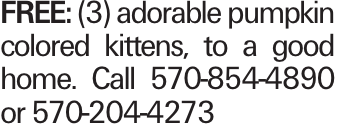 FREE: (3) adorable pumpkin colored kittens, to a good home. Call 570-854-4890 or 570-204-4273