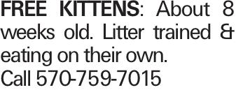 FREE KITTENS: About 8 weeks old. Litter trained & eating on their own. Call 570-759-7015