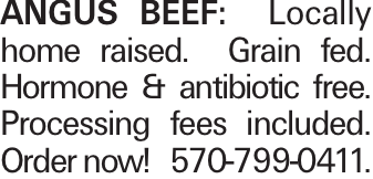 Angus Beef: Locally home raised. Grain fed. Hormone & antibiotic free. Processing fees included. Order now! 570-799-0411.