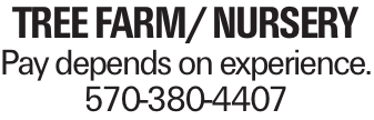 Tree Farm/ Nursery Pay depends on experience. 570-380-4407