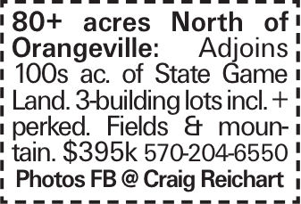 80+ acres North of Orangeville: Adjoins 100s ac. of State Game Land. 3-building lots incl. + perked. Fields & mountain. $395k 570-204-6550 Photos FB @ Craig Reichart