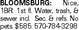 BLOOMSBURG: Nice, 1BR. 1st fl. Water, trash, & sewer incl. Sec. & refs. No pets. $585. 570-784-3298
