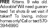 FREE Kittens. 9 wks old. Adorable! Will need guaranteed 1st shots & vet visit if taken!! To loving, indoor homes only! Call or text 570-394-6990