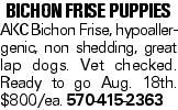 Bichon Frise Puppies AKCBichon Frise, hypoallergenic, non shedding, great lap dogs. Vet checked. Ready to go Aug. 18th. $800/ea. 570-415-2363