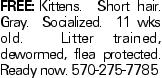 FREE:Kittens. Short hair. Gray. Socialized. 11 wks old. Litter trained, dewormed, flea protected. Ready now. 570-275-7785