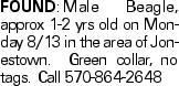 FOUND:Male Beagle, approx 1-2 yrs old on Monday 8/13 in the area of Jonestown. Green collar, no tags. Call 570-864-2648