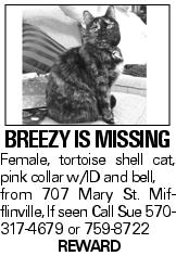BREEZY IS MISSING Female, tortoise shell cat, pink collar w/ID and bell, from 707 Mary St. Mifflinville, If seen Call Sue 570-317-4679 or 759-8722 Reward