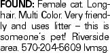 FOUND: Female cat. Longhair. Multi Color. Very friendly and uses litter -- this is someone's pet! Riverside area. 570-204-5609 lvmsg.