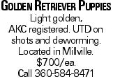 Golden Retriever Puppies Light golden, AKCregistered. UTDon shots and deworming. Located in Millville. $700/ea. Call 360-584-8471