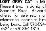 Lost Grey cat in Mt. Pleasant twp. in vicinity of Shanaer Road. Reward offered for safe return or information leading to him being found. Call 570-594-7524 or 570-854-1819.