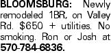 Bloomsburg: Newly remodeled 1BR, on Valley Rd. $650 + utilities. No smoking. Ron or Josh at 570-784-6836.