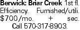 Berwick: Briar Creek 1st fl. Efficiency. Furnished/utili. $700/mo. + sec. Call 570-317-8903.