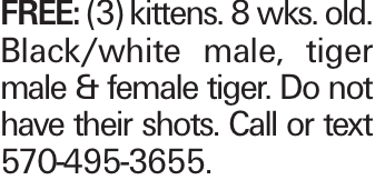 Free: (3) kittens. 8 wks. old. Black/white male, tiger male & female tiger. Do not have their shots. Call or text 570-495-3655.