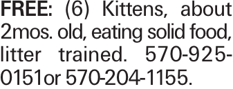 Free: (6) Kittens, about 2mos. old, eating solid food, litter trained. 570-925-0151or 570-204-1155.