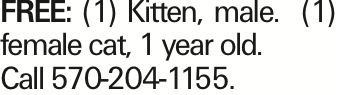 Free: (1) Kitten, male. (1) female cat, 1 year old. Call 570-204-1155.