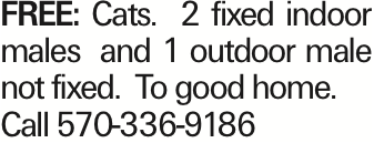 FREE:Cats. 2 fixed indoor males and 1 outdoor male not fixed. To good home. Call 570-336-9186