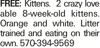 FREE:Kittens. 2 crazy love able 8-week-old kittens. Orange and white. Litter trained and eating on their own. 570-394-9569