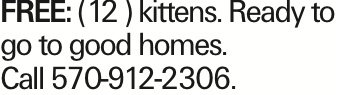 FREE: (12 ) kittens. Ready to go to good homes. Call 570-912-2306.