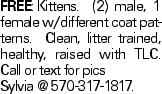 FREE:Kittens. (2) male, 1 female w/different coat patterns. Clean, litter trained, healthy, raised with TLC. Call or text for pics Sylvia @ 570-317-1817.