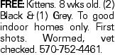 FREE:Kittens. 8 wks old. (2) Black &(1) Grey. To good indoor homes only. First shots. Wormed, vet checked. 570-752-4461.