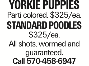 Yorkie Puppies Parti colored. $325/ea. Standard Poodles $325/ea. All shots, wormed and guaranteed. Call 570-458-6947