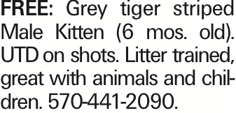 Free: Grey tiger striped Male Kitten (6 mos. old). UTDon shots. Litter trained, great with animals and children. 570-441-2090.
