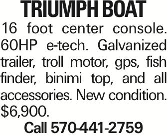 Triumph Boat 16 foot center console. 60HP e-tech. Galvanized trailer, troll motor, gps, fish finder, binimi top, and all accessories. New condition. $6,900. Call 570-441-2759