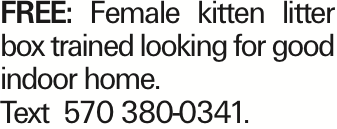 FREE: Female kitten litter box trained looking for good indoor home. Text 570 380-0341.