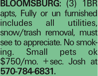 Bloomsburg: (3) 1BR apts, Fully or un furnished includes all utilities, snow/trash removal, must see to appreciate. No smoking. Small pets ok $750/mo. +sec. Josh at 570-784-6831.