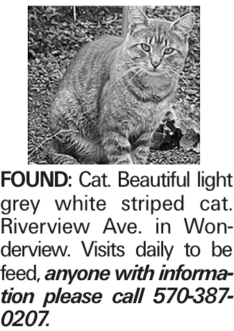 Found: Cat. Beautiful light grey white striped cat. Riverview Ave. in Wonderview. Visits daily to be feed, anyone with information please call 570-387-0207.
