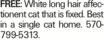FREE: White long hair affectionent cat that is fixed. Best in a single cat home. 570-799-5313. As published in the Press Enterprise.