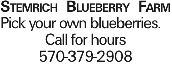 Stemrich Blueberry Farm Pick your own blueberries. Call for hours 570-379-2908 As published in the Press Enterprise.