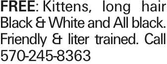 FREE:Kittens, long hair Black & White and All black. Friendly & liter trained. Call 570-245-8363 As published in the Press Enterprise.