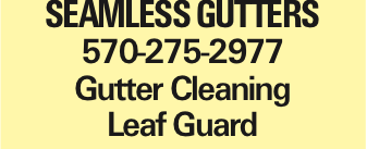 SEAMLESS GUTTERS 570-275-2977 Gutter Cleaning Leaf Guard As published in the Press Enterprise.