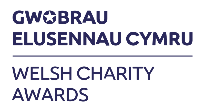 Welsh Charity Awards.png